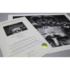 Certificate - Eredetiséget igazoló tanúsítvány A4 25 lap