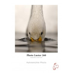 "260 g/m² 17""/432mm x 30m  Hahnemühle Photo Luster"